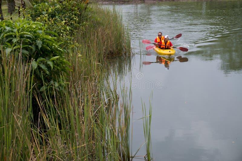 Vrienden die in kajak in een rivier op een zonnige dag paddelen royalty-vrije stock afbeeldingen