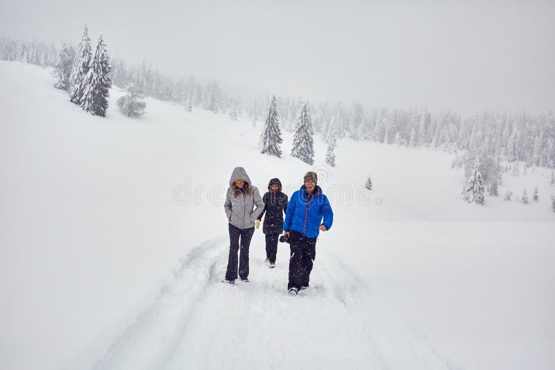 Vrienden die op een sneeuwsleep wandelen stock foto's