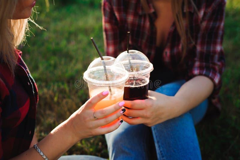 Vrienden die sap op groen gras in het park drinken royalty-vrije stock fotografie