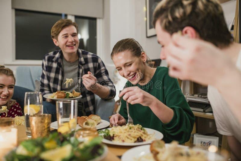 Vrienden die van een Dinerpartij genieten royalty-vrije stock foto's