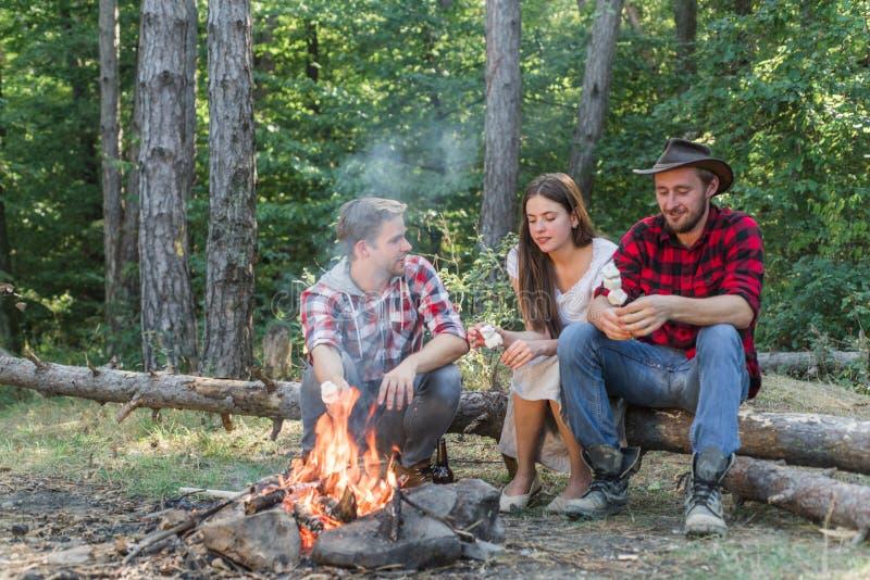 Vrienden genieten van picknick in de boze toeristen die ontspannen Vrolijke vrienden genieten van bont in de natuur Vrienden royalty-vrije stock afbeelding