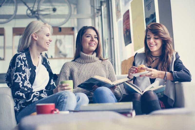 Vrienden in koffie Drie beste en vrienden die samen leren eten royalty-vrije stock foto's