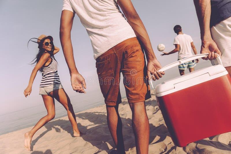 Vrienden op het strand stock foto