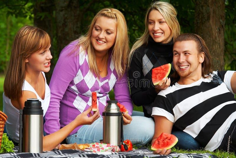 Vrienden op picknick royalty-vrije stock afbeelding
