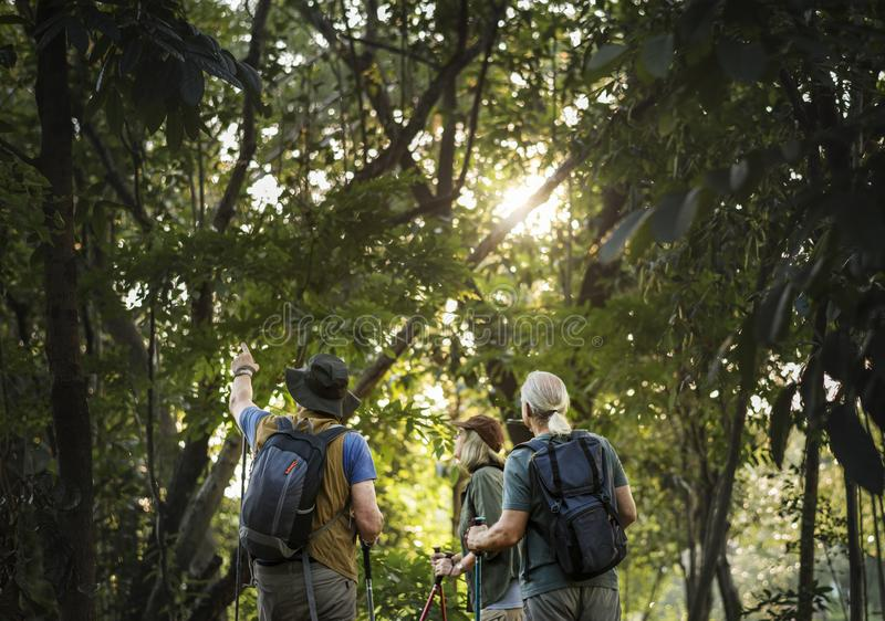 Vriendentrekking door bos samen royalty-vrije stock afbeeldingen
