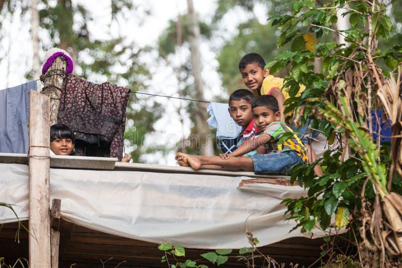 Vriendschap enkel, kinderen in Sri Lanka royalty-vrije stock foto's