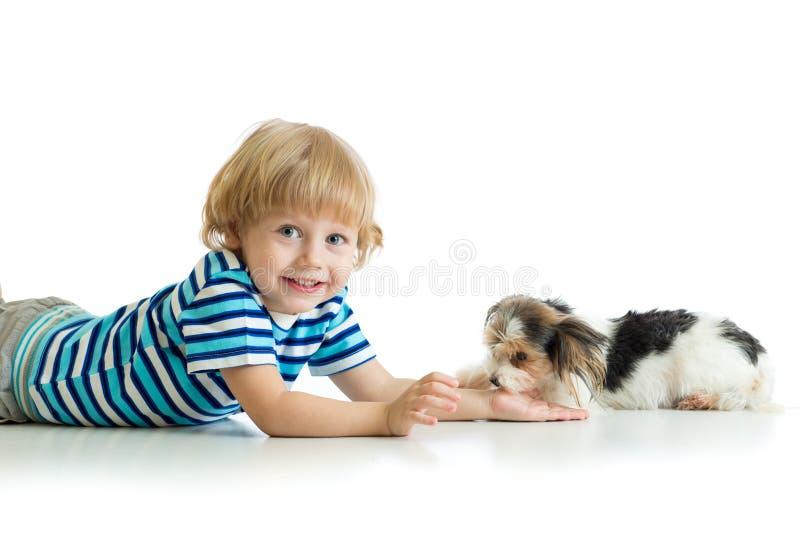 Vriendschap tussen kind en de leuke terriër van hondyorkie stock foto's