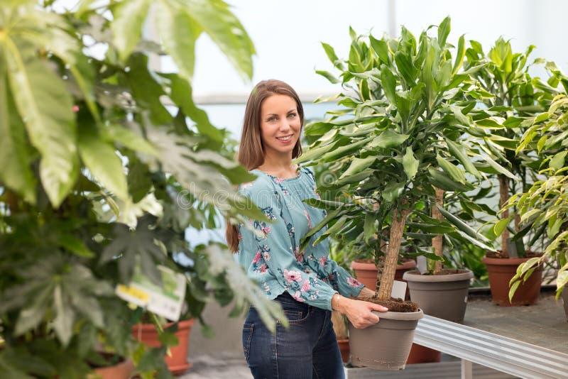 Vriendschappelijke glimlachende jonge vrouw die een yuccainstallatie kopen royalty-vrije stock foto's