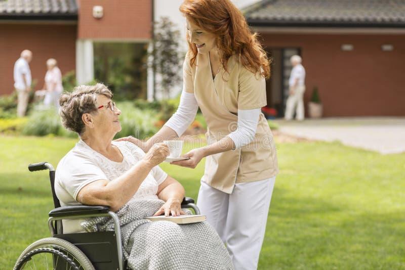 Vriendschappelijke verpleegster die thee geven aan gehandicapte hogere vrouw in een wheelcha royalty-vrije stock foto