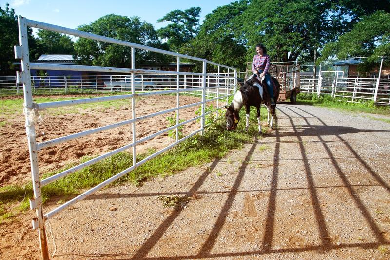 Vrij Aziatische vrouwenveedrijfster die een paard in openlucht in een landbouwbedrijf berijden royalty-vrije stock fotografie