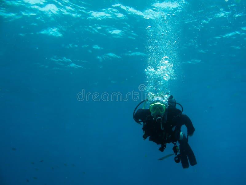 Vrij duiken royalty-vrije stock afbeeldingen