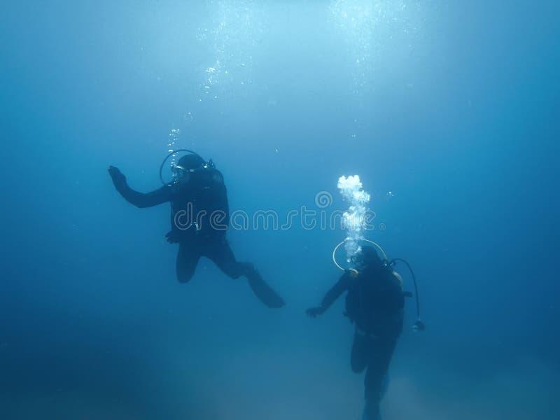Vrij duiken Duikers onderwater stock foto's