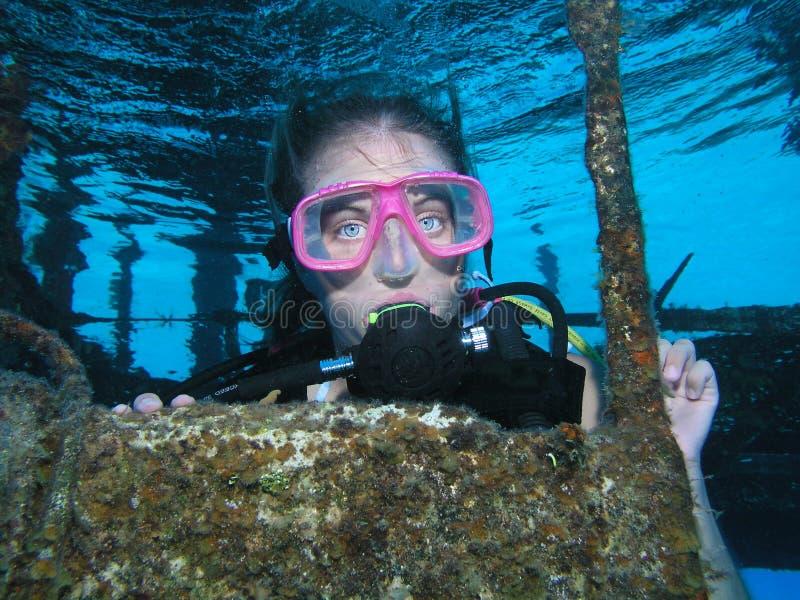 Vrij duiken op een wrakplaats stock afbeelding