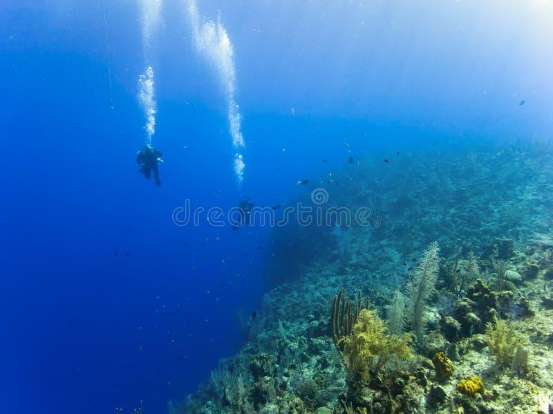 Vrij duiken over een 6000ft kloof royalty-vrije stock foto's