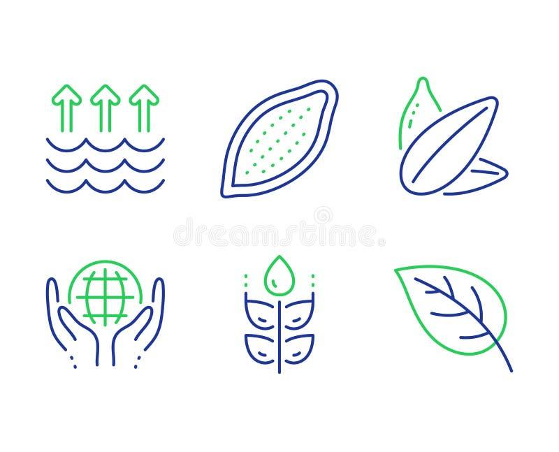Vrij gluten, geplaatste Cacaonoot en de pictogrammen van het Zonnebloemzaad Organische geteste, Verdampings en Bladtekens Vector royalty-vrije illustratie
