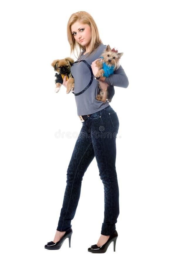 Vrij het jonge blonde stellen met twee honden stock afbeelding