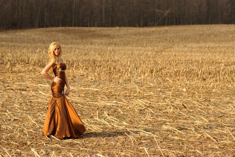 Vrij jonge blonde vrouwelijke dame op gebied in upstate ny stock afbeelding