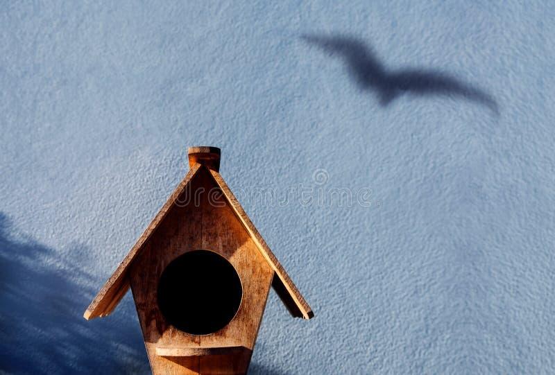 Vrijheid en Vluchtconcept Schaduw die van Vogel op het Cement in de schaduw stellen stock afbeeldingen