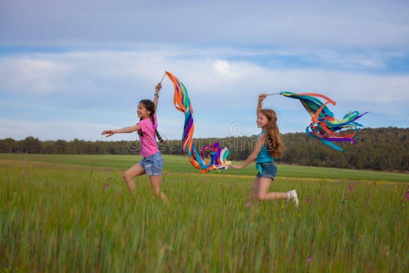 Vrijheid, gezonde de zomerjonge geitjes royalty-vrije stock afbeeldingen