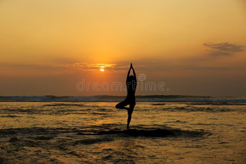 Vrikshasana drzewna poza od joga obraz royalty free