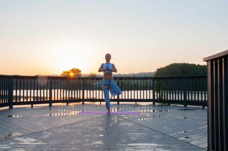Vrikshasana poserar Den unga kvinnan gör yoga på soluppgången arkivbilder
