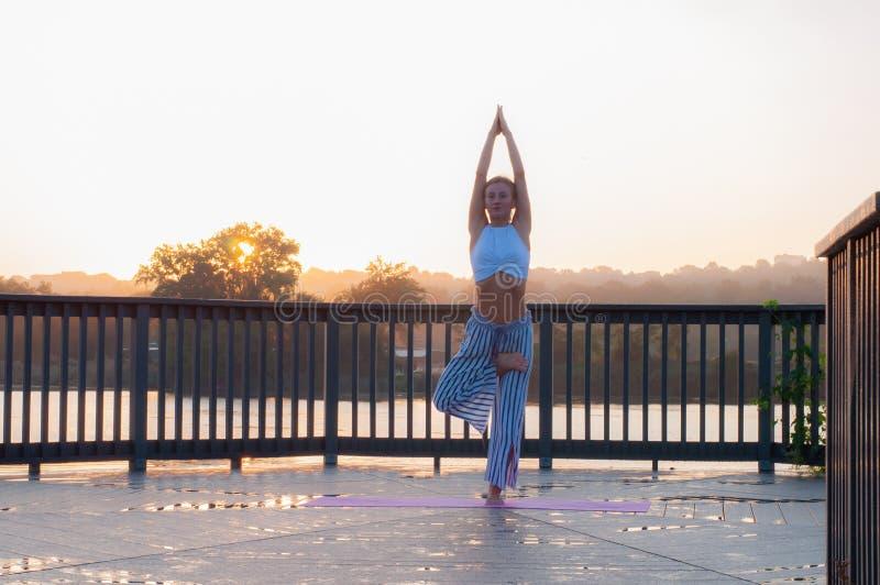 Vrikshasana poserar Den unga kvinnan gör yoga på soluppgången arkivfoton