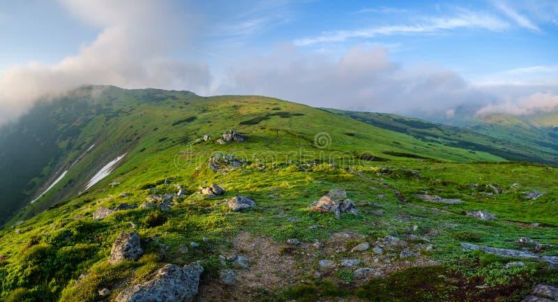 Vroeg de bergpanorama van de ochtendzomer stock afbeeldingen