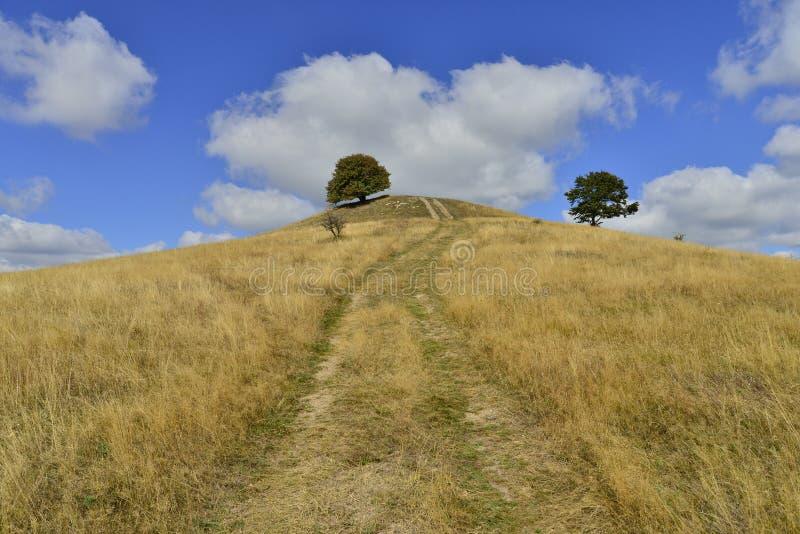 Vroeg de herfstlandschap met heuvel, bomen en landweg royalty-vrije stock foto