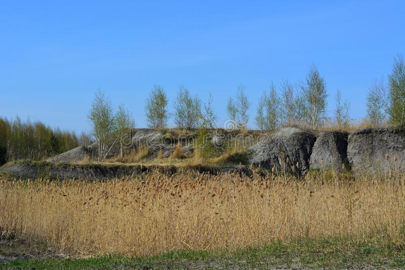 Vroeg de lentelandschap Gebied met droge kruiden en bomen met jong gebladerte op de heuvel op de achtergrond royalty-vrije stock foto