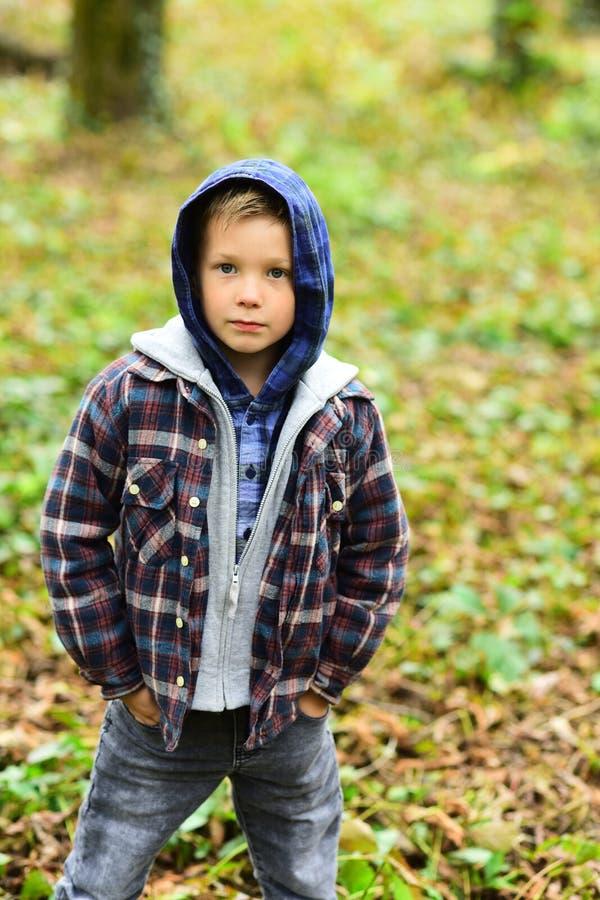 Vroege Daling Kleine jongen in daling Klein kind in toevallige uitrusting openlucht Aanbiddelijke jongen in hoodie, dalingsmanier royalty-vrije stock foto