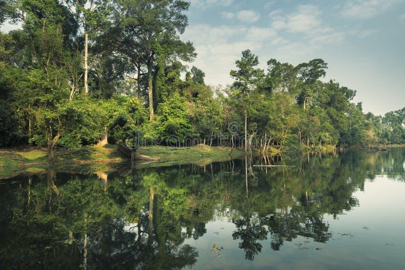 Vroege ochtend in Angkor Watï ¼ ŒCambodia royalty-vrije stock afbeeldingen