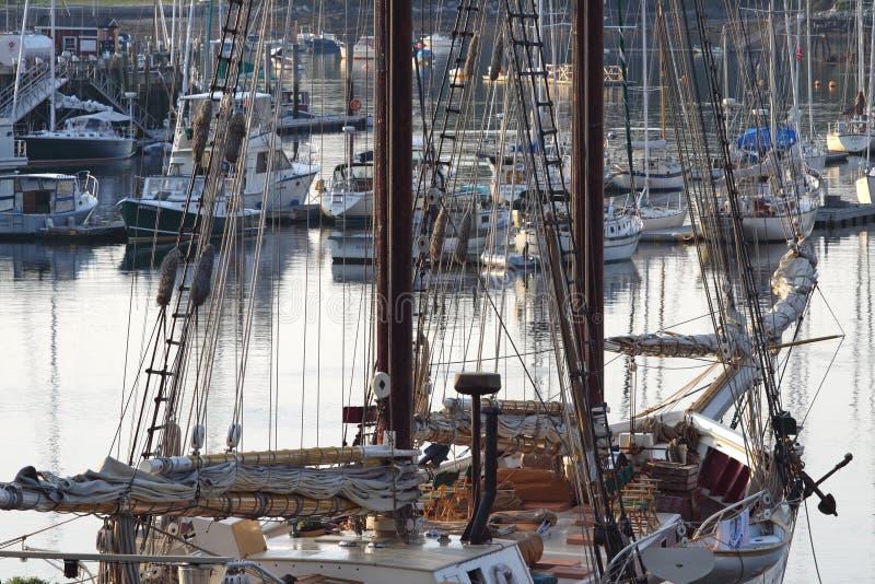 Vroege ochtend in de Haven Maine van Camden stock foto's