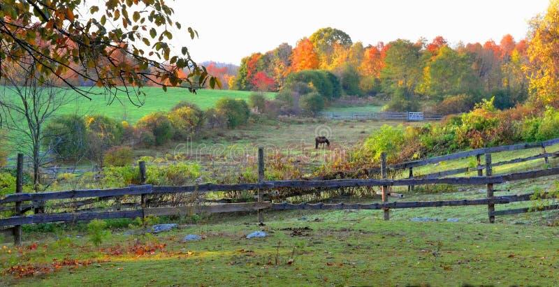 Vroege Ochtend op een Landbouwbedrijf van Bolton - Bolton, Ma door Eric L Johnson Photography royalty-vrije stock afbeelding