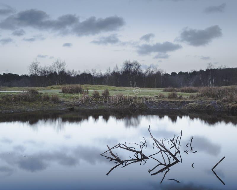 Vroege ochtendbezinning in klein meer met gebroken van tak royalty-vrije stock afbeelding