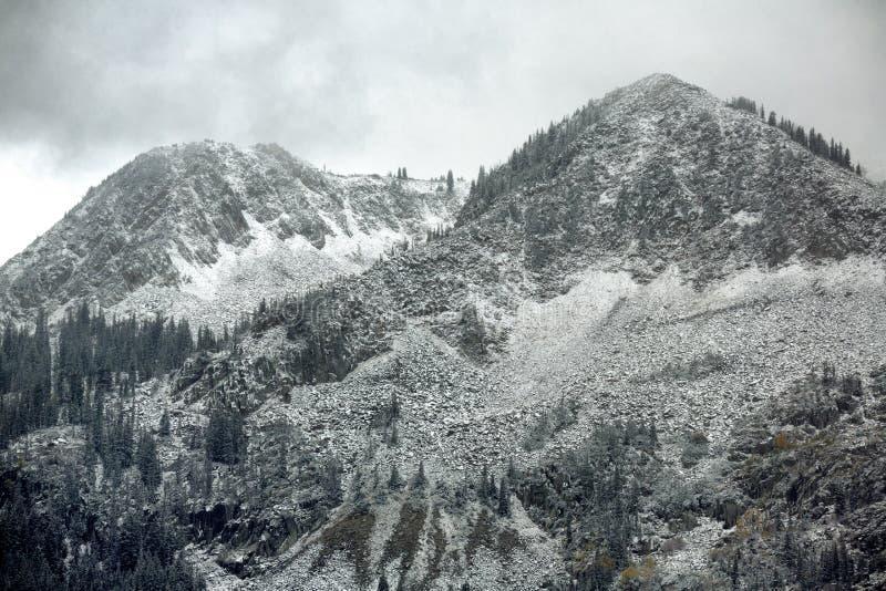Vroege Sneeuw stock foto