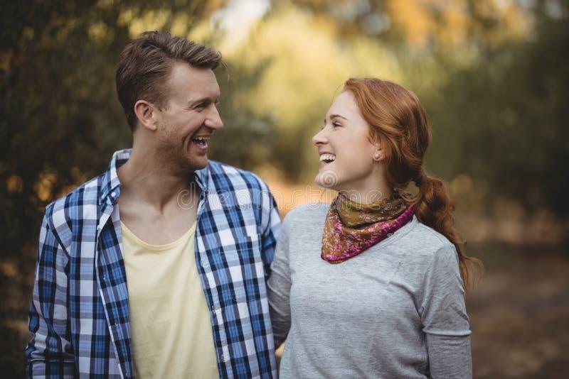 Vrolijk paar die elkaar bij olijflandbouwbedrijf bekijken royalty-vrije stock afbeeldingen
