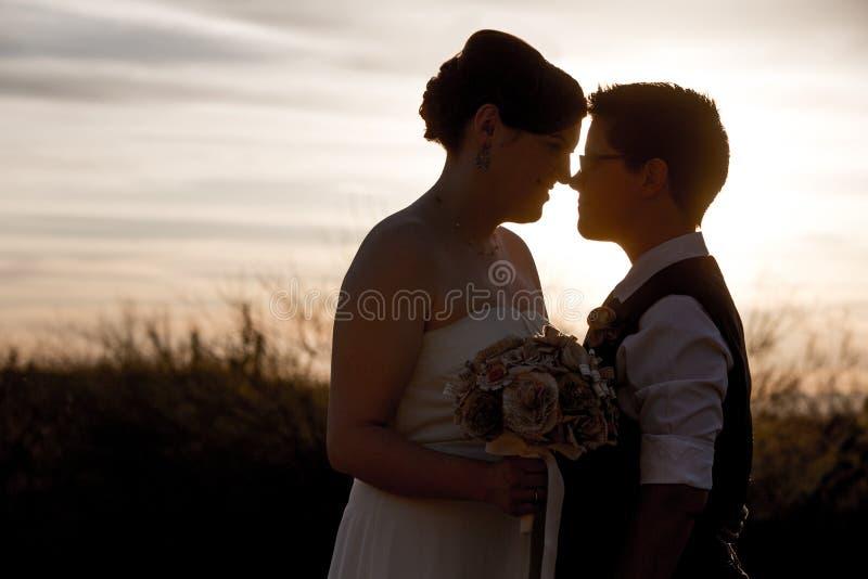 Vrolijk Paar wat betreft Neuzen royalty-vrije stock foto's