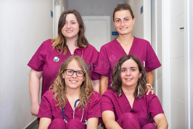 Vrolijk vrouwen veterinair team royalty-vrije stock fotografie