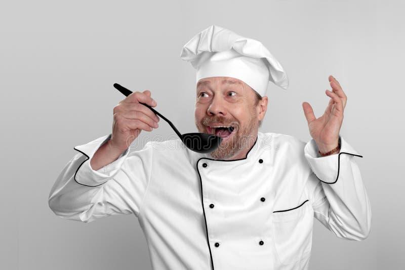 Vrolijke chef-kok met een baard royalty-vrije stock afbeelding