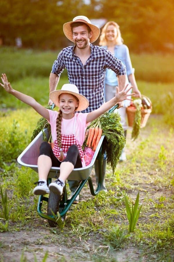 Vrolijke dochter in kruiwagen met vader royalty-vrije stock afbeelding