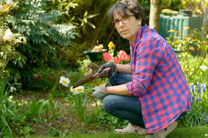 Vrolijke donkerbruine vrouw die bloemen in tuin planten stock afbeelding