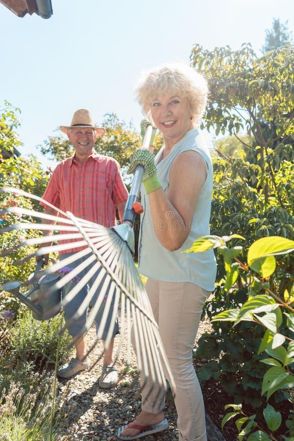 Vrolijke hogere vrouw die een bladhark houden tijdens het werk in de tuin stock fotografie