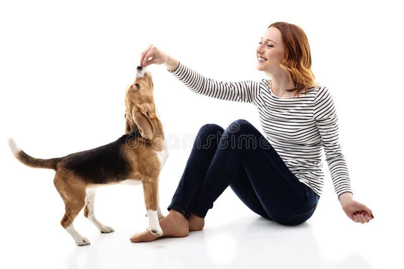 Vrolijke jonge vrouw die voedsel geven aan puppy stock foto's