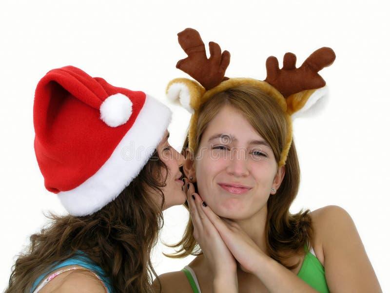 Download Vrolijke Kerstmis stock foto. Afbeelding bestaande uit wijfje - 291690