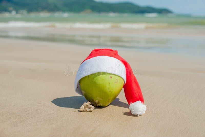 Vrolijke Kerstmis en Gelukkig Nieuwjaar op het de zomerstrand Kokosnoot in santahoed Palmen en blauwe hemel op de achtergrond royalty-vrije stock afbeelding