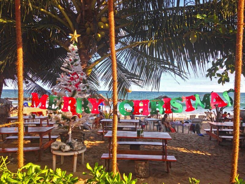 Vrolijke Kerstmis op de kust van de Indische Oceaan stock afbeeldingen