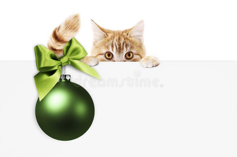 Vrolijke Kerstmisuithangbord of giftkaart voor dierenwinkel of dierenartsclini royalty-vrije stock fotografie