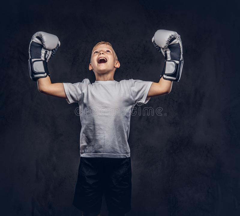 Vrolijke knap weinig jongensbokser met blondehaar gekleed in een witte t-shirt die bokshandschoenen dragen verheugt zich in a stock foto's