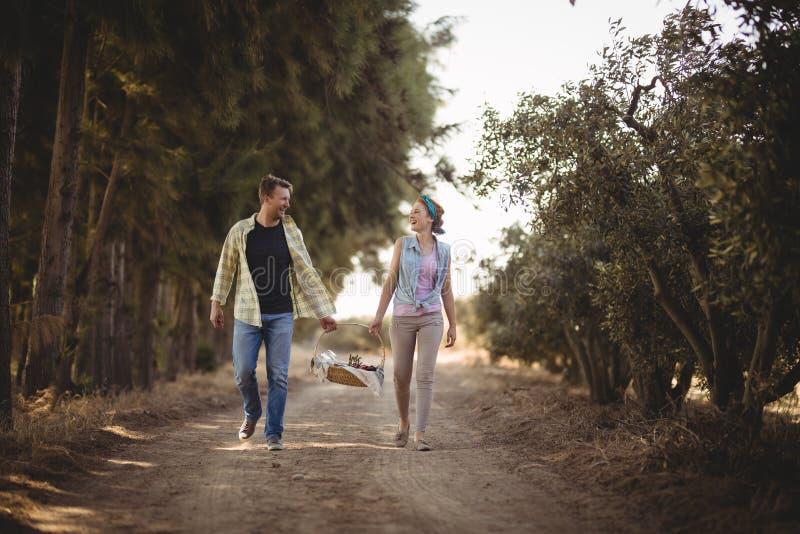 Vrolijke paar dragende mand terwijl het lopen bij de landweg bij olijflandbouwbedrijf royalty-vrije stock afbeelding