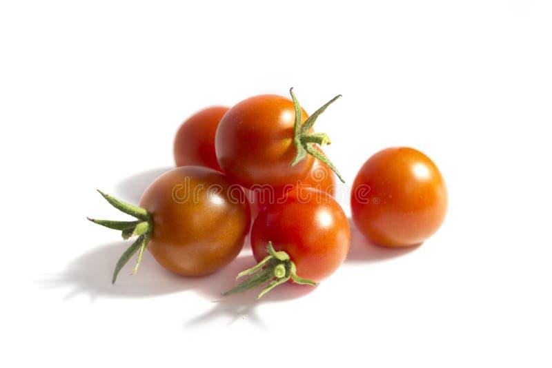 Vrolijke tomaten die op wit worden geïsoleerdr stock fotografie